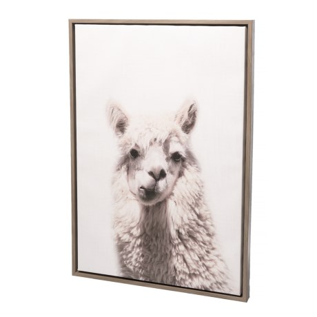 Image of 23x33? Gray Alpaca Wall Art