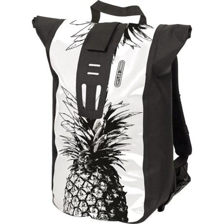 Image of 24L Velocity Design Backpack