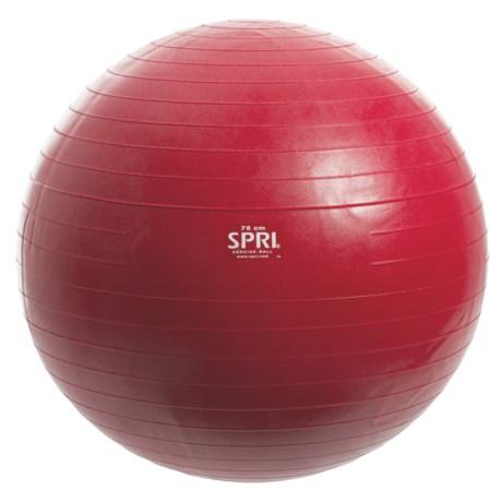 Image of 65cm Pro Exercise Ball Kit