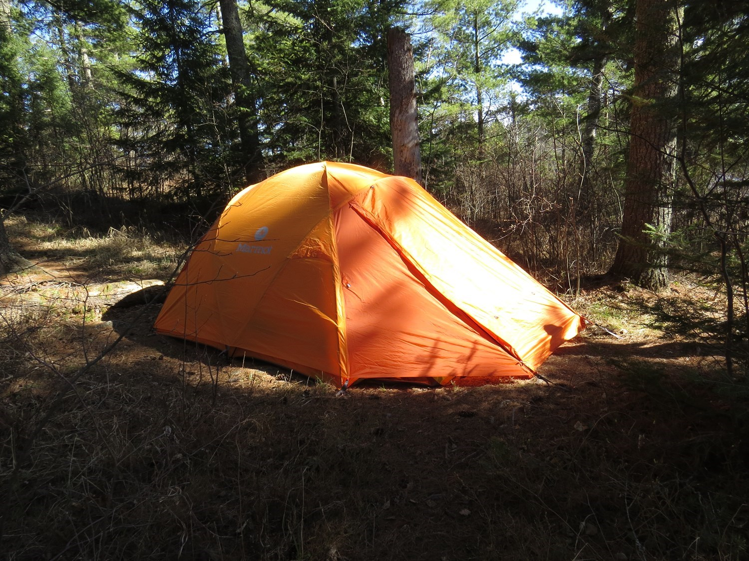 & Marmot Odyssey 4 Tent - 4-Person 3-Season