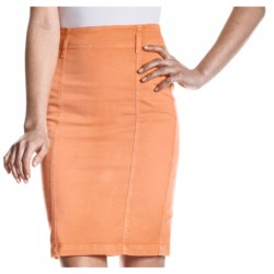 Agave Dolce Skirt (For Women) in Fog