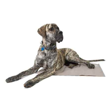 "AKC Bones Dog-Cooling Mat - Extra Large, 24x30"" in Taupe - Closeouts"