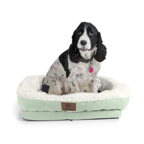 "AKC Orthopedic Box Snuggle Dog Bed - 6x30x32"", Large in Green/White"