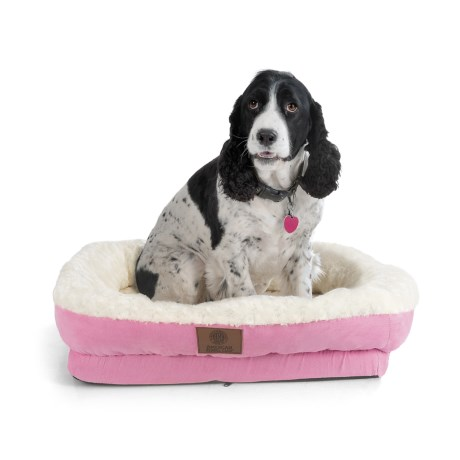 "AKC Orthopedic Box Snuggle Dog Bed - 6x30x32"", Large in Pink/White"