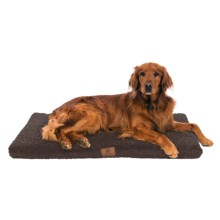 """AKC Orthopedic Crate Mat - 42x27"""" in Brown - Closeouts"""