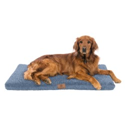 "AKC Orthopedic Crate Mat - 42x27"" in Tan"