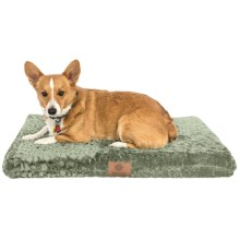 "AKC Orthopedic Dog Crate Mat - 3x22x30"" in Sage - Closeouts"