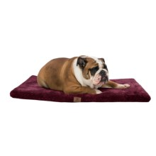 "AKC Pixel Memory-Foam Dog Mat - 36x23"" in Burgundy - Closeouts"