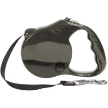 AKC Retractable Leash in Silver - Closeouts