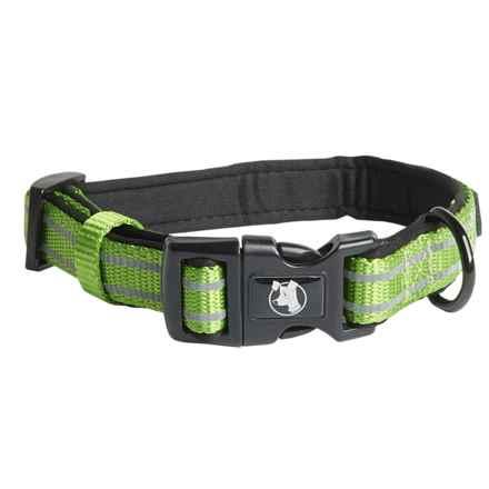 alcott Adventure Dog Collar in Green - Closeouts