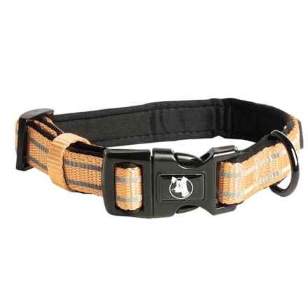 alcott Essentials Adventure Dog Collar in Olive Green - Closeouts