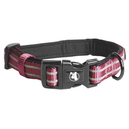 alcott Essentials Adventure Dog Collar in Red - Closeouts