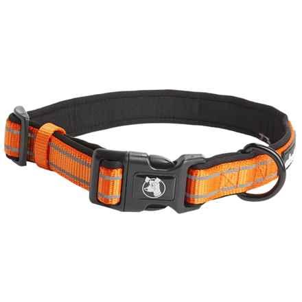 alcott Essentials Visibility Dog Collar in Neon Orange - Closeouts
