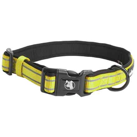 Alcott Essentials Visibility Dog Collar in Neon Yellow - Closeouts
