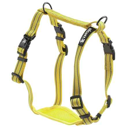 Alcott Essentials Visibility Dog Harness in Neon Yellow - Closeouts