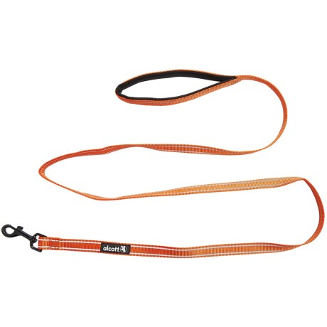 Alcott Essentials Visibility Dog Leash - 6' in Neon Orange