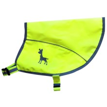 alcott Essentials Visibility Dog Vest - Small in Neon Yellow - Closeouts