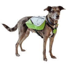 alcott Explorer Adventure Backpack Dog Pack - Large in Grey/Green - Closeouts