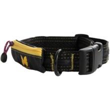 Alite Designs Boa Lite Dog Collar in Black - Closeouts