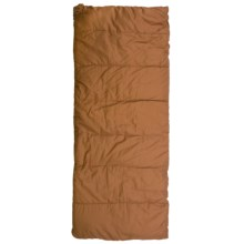 ALPS Mountaineering 0°F Cedar Ridge Silverthorne Sleeping Bag - Rectangle in Brown - Closeouts