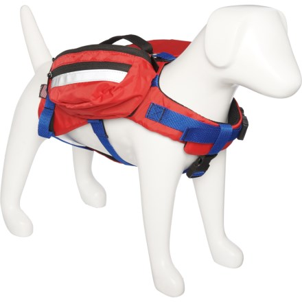 differently fefe7 717de Dog Collars, Leashes & Harnesses: Average savings of 48% at ...