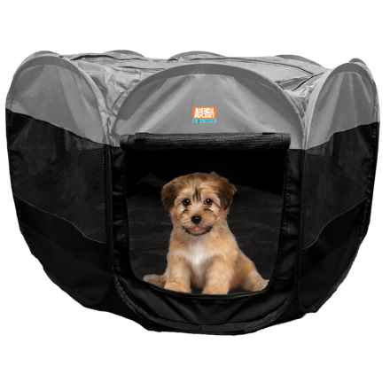 """Animal Planet Portable Gray Pet Playpen - 36x36x23"""" in Gray - Closeouts"""