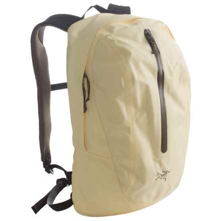 Arc'teryx Astri 19 Backpack in Alabaster - Closeouts