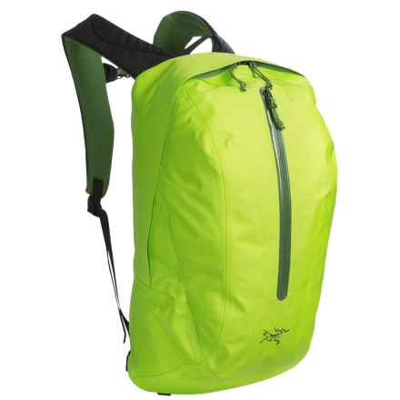Arc'teryx Astri 19 Backpack in Mantis Green - Closeouts