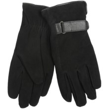 Auclair Deersuede Gloves - Insulated (For Women) in Black - Closeouts