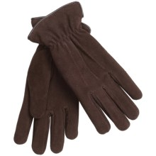 Auclair Deersuede Gloves - Thermolite® Insulated (For Women) in Dark Brown - Closeouts