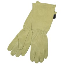 Auclair Rose Worker Gloves - Cowsplit Suede (For Women) in Fern - Closeouts