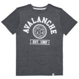 Avalanche Circle Graphic Branded T-Shirt - Short Sleeve (For Big Boys)
