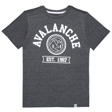 Avalanche Circle Graphic Branded T-Shirt - Short Sleeve (For Big Boys) in Charcoal Heather