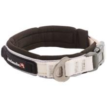 Avalanche Reflective Dog Collar in Black/White - Closeouts