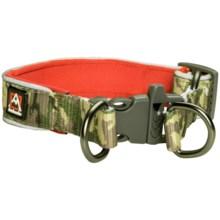 Avalanche Reflective Dog Collar in Camo Print - Closeouts