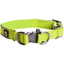 Avalanche Reflective Dog Collar in Green - Closeouts