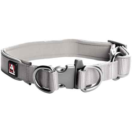 Avalanche Reflective Dog Collar in Grey - Closeouts