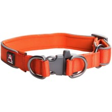 Avalanche Reflective Dog Collar in Orange - Closeouts