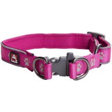 Avalanche Reflective Dog Collar in Purple Paw Print - Closeouts