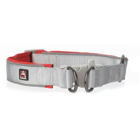 Avalanche Reflective Dog Collar in Red