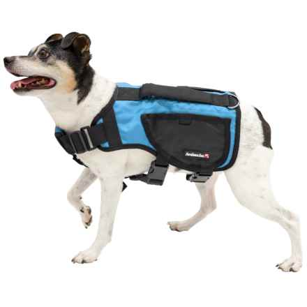 Avalanche Thermal Dog Harness Vest in Blue - Closeouts