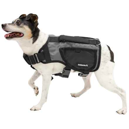 Avalanche Thermal Dog Harness Vest in Grey - Closeouts