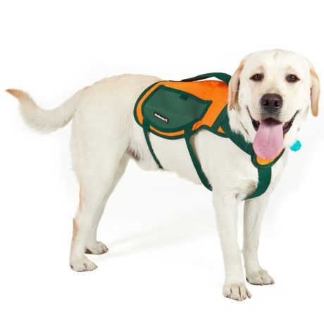 Avalanche Thermal Dog Harness Vest
