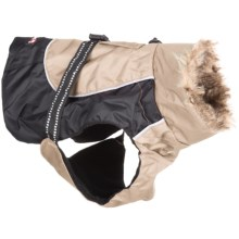 Avalanche Winter Dog Jacket - Faux-Fur Trim in Brown/Khaki - Closeouts
