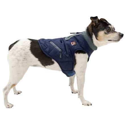 Avalanche Winter Dog Jacket - Insulated in Navy - Closeouts