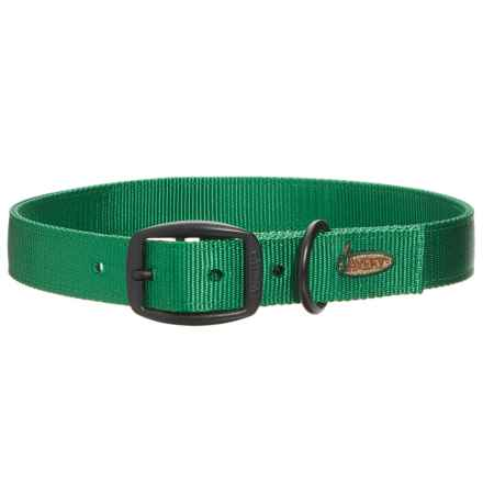 Avery Dog Collar in Green - Closeouts