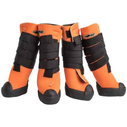Avery Hi-Top Dog Boots in Blaze - Closeouts