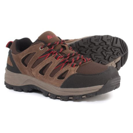 Backcountry Hiking Shoes - Suede (For Men)