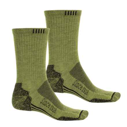 Ballston Endurance Outdoor Socks - 2-Pack, CoolMax®, Crew (For Men and Women) in Lime/Black - Closeouts