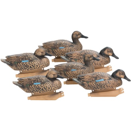 Banded Blue Winged Teal Decoys - Floating, 6-Pack Hens in See Photo